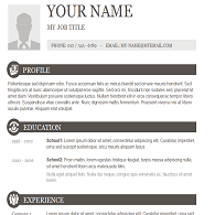 free copy and paste resume templates